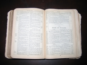 Psalms Bible